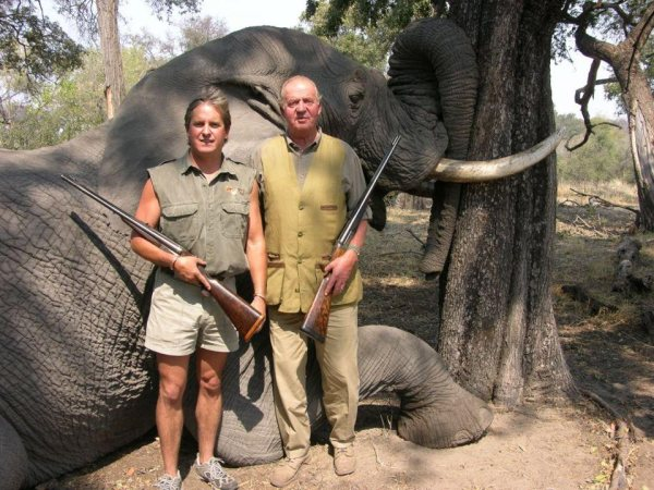 elefante juan carlos