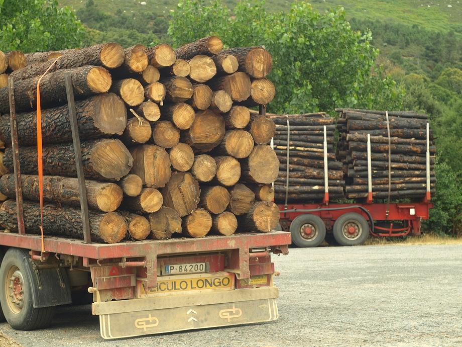 Galiza, incendios: La Xunta admite que en As Fragas do Eume han ardido 750 hectáreas.  - Página 4 P8040388